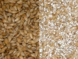 The malt before and after the malt mill