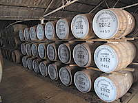 A storage house with whisky barrels