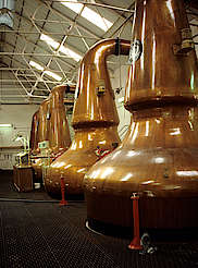 Dailuaine pot stills uploaded by Ben, 17. Feb 2015