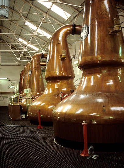 The Dailuaine pot stills