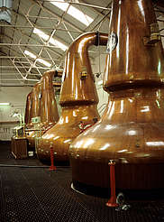 Dailuaine Pot Stills uploaded by Ben, 17. Feb. 2015
