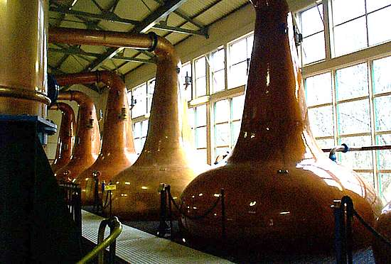 The pot stills of the Glen Ord distillerie.
