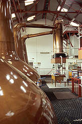 Royal Brackla Pot Stills with condensers uploaded by Ben, 21. Apr 2015