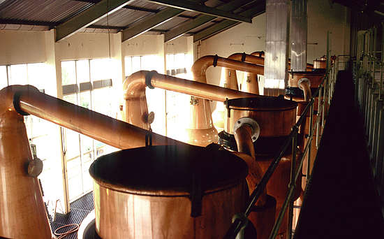 Clynelish Pot Stills and condensers