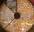Read an overview about how the grain for Bourbon Whiskey is chosen. The corn, rye content gives the mash bill. Also see the grain mills and silos.