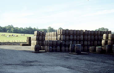 Glenfiddich cask stock uploaded by Ben, 18. Mar 2015