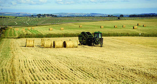 A harvester on a Scottish barley field